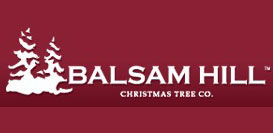 Balsam Hill Deals